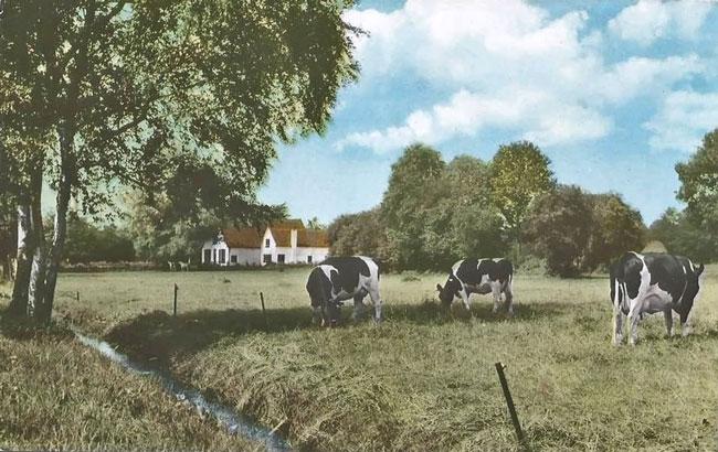 Landgoed de Kamp, ansicht 1973